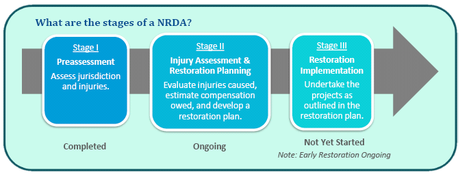 NRDA Stages