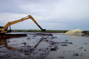 Restoration underway in Plaquemines Parish, Louisiana. Credit: ELI.